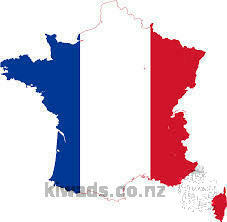 FRENCH NATIVE TEACHER GIVING PRIVATE FRENCH CLASS IN AUCKLAND CBD